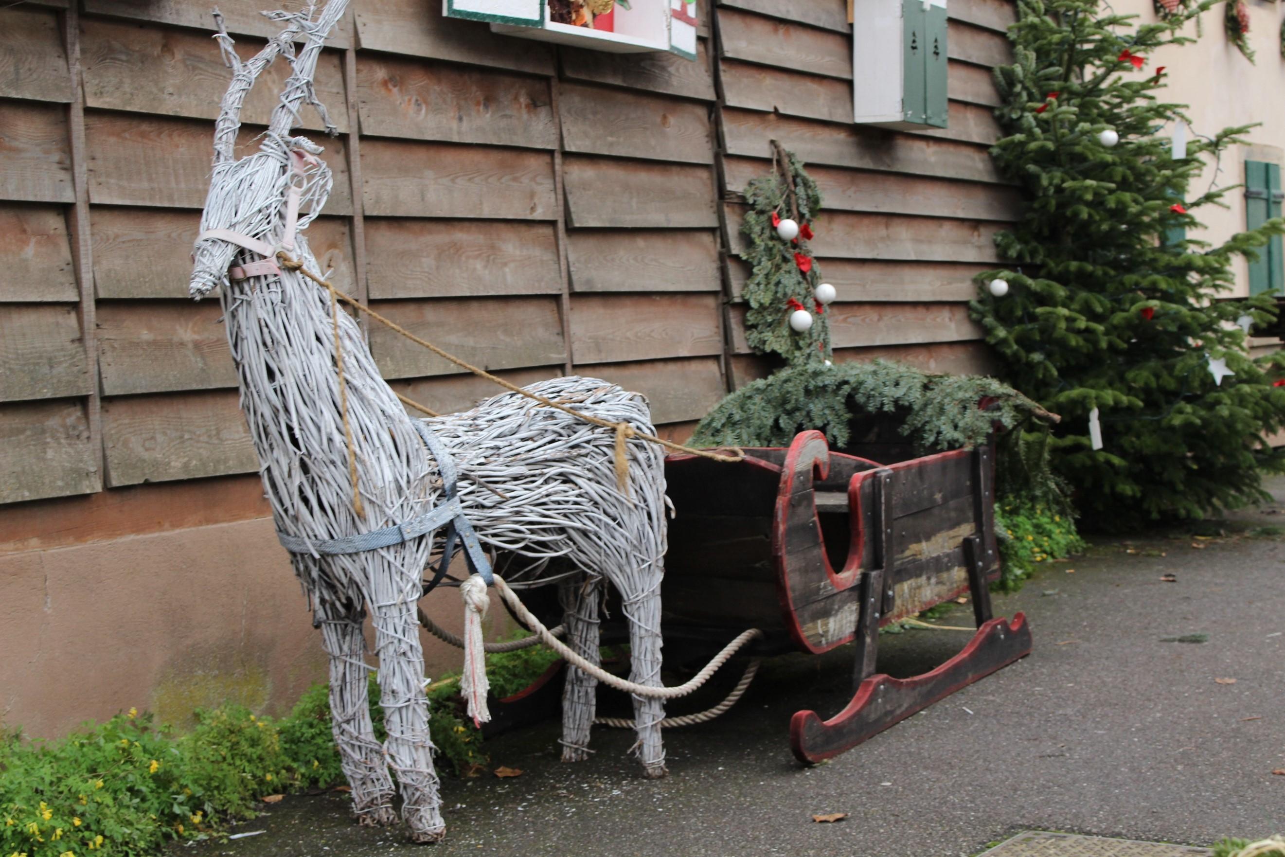 Le renne du Père Noel