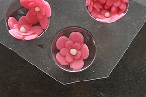 détails des fleurs qui vont décorer les gâteaux de Laura